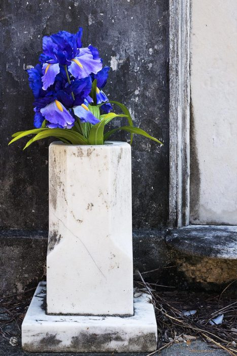 Irises in White Marble Urn, St. Louis Cemetery No 1, New Orleans