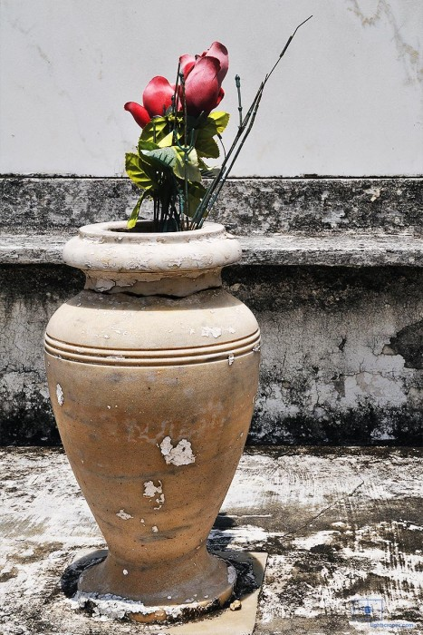 Artificial Red Roses in a Marble Vase, St. Louis Cemetery No 1, New Orleans, Louisiana