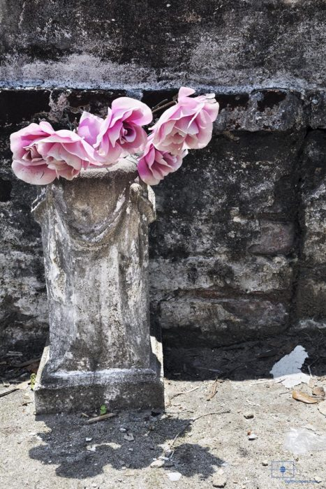 Pink Roses in Marble Vase, St. Louis Cemetery No 1, New Orleans, Louisiana