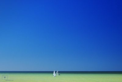 Two White Sailboats on the Gulf of Mexico, Naples, Florida