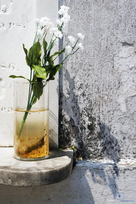 Artificial Baby's Breath Flowers in a Glass of Water, Lafayette Cemetery No 1, New Orleans