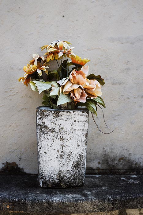 Pale Flowers in Whitewashed Urn, Lafayette Cemetery No 1, New Orleans