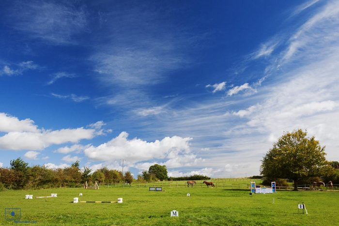 Hunter's Course and Horses from Milston Manor, Wiltshire, United Kingdom
