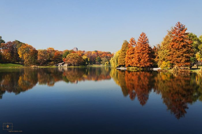 Fall Colors on Trees and Reflections from Harlem Meer, Central Park, New York City