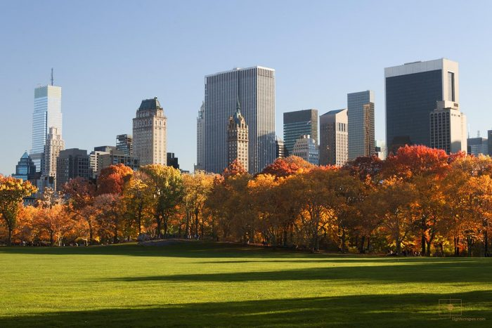Sheep Meadow with Buildings of Central Park South and 5th Avenue, New York City